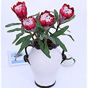 Skyseen 3PCS Artificial Protea Cynaroides Silk Princess Flower Simulation King Protea for Floral Arrangements Home Party Wedding Decor (Red) 42