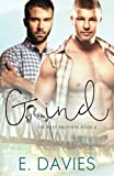 Grind (The Riley Brothers) (Volume 6)