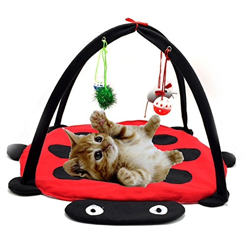 Wildgirl Cute Red and Black Ladybug Pattern Cat Activity Play Mat Pet Bed with Hanging Toys Bells Balls and Mice