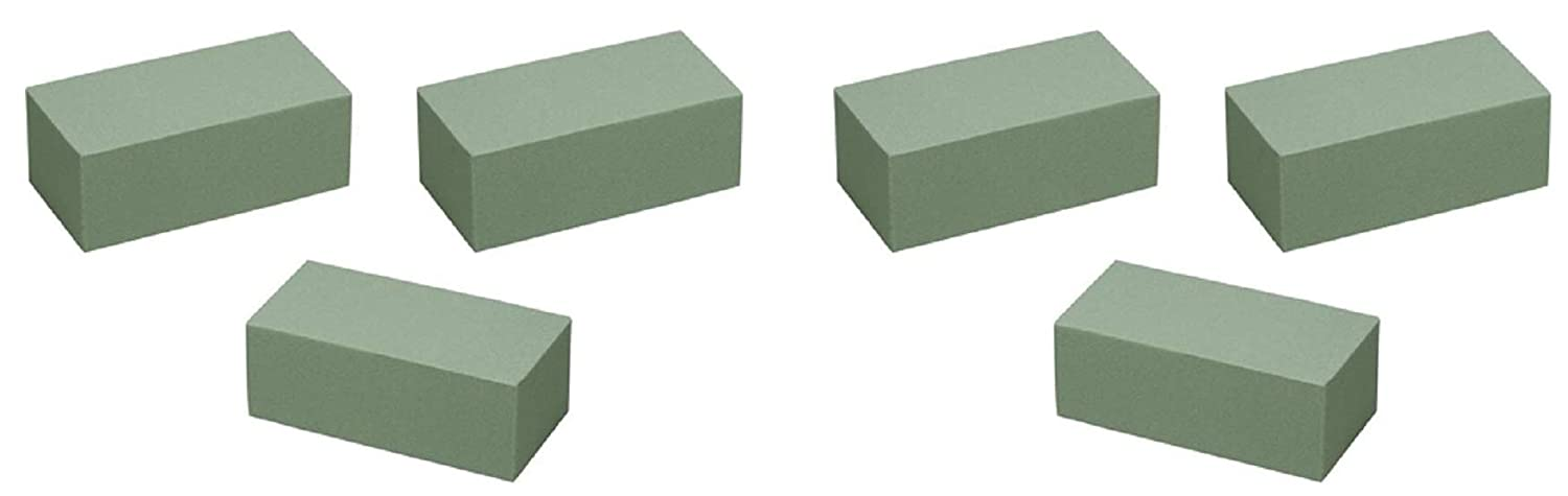 and Projects Permanent Botanicals Pack of 14 Premium Bricks. Artificial Flowers Dry Floral Foam for Crafts Floral Supply Online