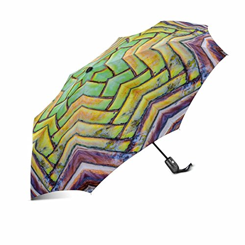 InterestPrint Close Up of Banana Leaf Bases on a Traveler's Palm Windproof Auto Open and Close Foldable Umbrella, Lightweight Portable Outdoor Sun Umbrella with UV Protection Palm Umbrella Base