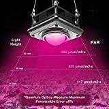 LED Grow Light,Bermunavy Full Spectrum Grow