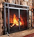 44''W x 33''H Solid Steel Flat Guard Fire Screen With Doors