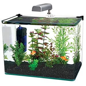 limited Time Offer Excellent Quality Brand New Practical 10 Gallon Aquarium