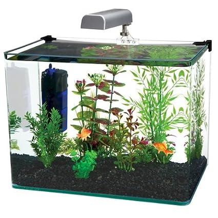 .com : penn plax curved corner glass aquarium kit, filter, led ...