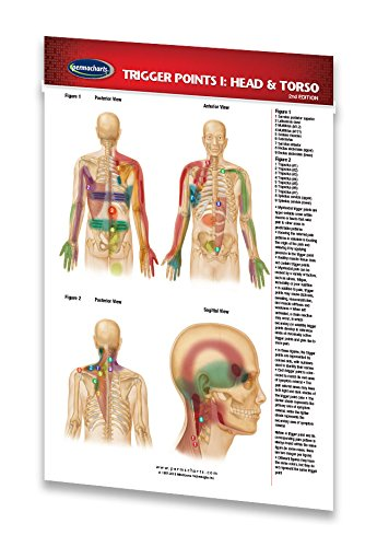 Trigger Points I: Head & Torso - Pocket Chart - Reflexology Quick Reference Guide by Permacharts ()
