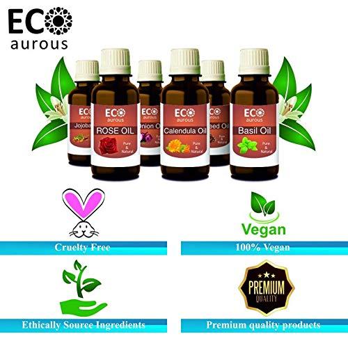Spanish Sage Oil (Salvia lavandulifolia) 100% Natural, Organic, Vegan & Cruelty Free Spanish Sage Essential Oil | Pure Spanish Sage Oil By Eco Aurous