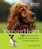 Young at Heart: 120 Things You Can Do Right Now to Give Your Older Dog a Longer, Healthier Life