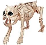 Seasons Halloween Skeleton Dog with LED Eyes