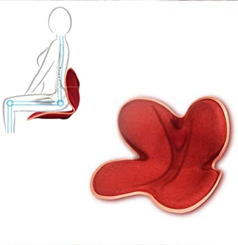 PEIQI HOME Cojín terapéutico ortopédico Cojín ergonómico para Alivio de coxis, Espalda Inferior y ciática. Portátil, para la Oficina, casa, Coche, Silla de ...