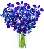 KaBloom Orchid Bouquet with Vase, Blue, (10 Stems)
