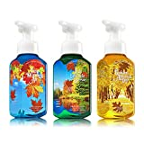3pc SET - Bath & Body Works Gentle Foaming Hand Soap BRIGHT LEAVES & BLUE SKIES Collection - Crisp Morning Air, Lakeside Breeze & Golden Autumn Day