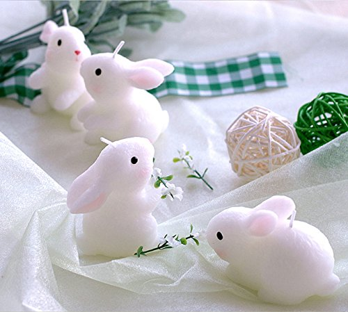 Set of 4 Lucky Rabbit Candle Cake Topper Party Decoration with Individual Gift Box Baby Shower Favors Attached with Greeting Card from Sweet Homes & Gardens