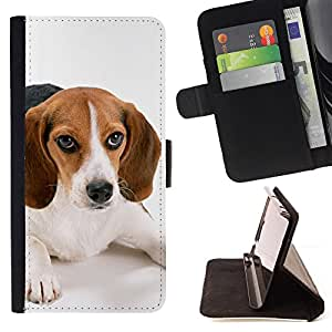 KingStore / Leather Etui en cuir / Samsung Galaxy S3 MINI 8190 / Beagle Puppy Small Dog Breed Hocico