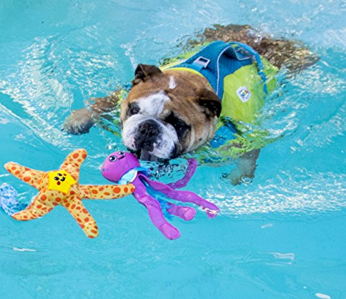 Outward Hound 67873 Floatiez Starfish Pet Toy, Orange, MD