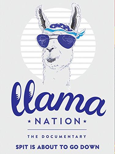 Allsop Box - Llama Nation
