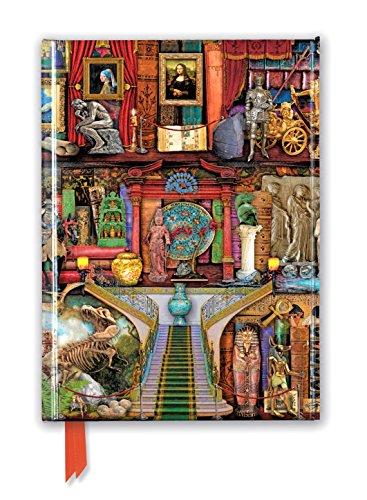 Aimee Stewart: Museum Bookshelves (Foiled Journal) (Flame Tree Notebooks)