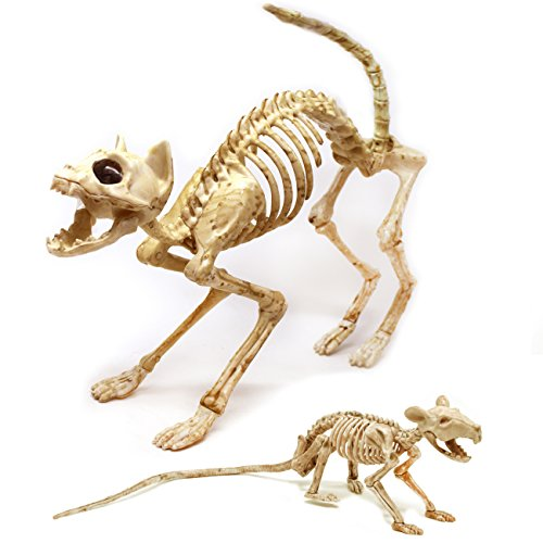 Spooktacular Creations Skeleton Cat & Rat Skeleton for Halloween Skeleton Animal Decorations, Skeleton Yard Décor and Reaper Bones (Halloween Yard Decoration)