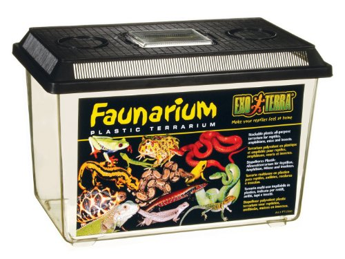 Which are the best exo terra faunarium available in 2019?