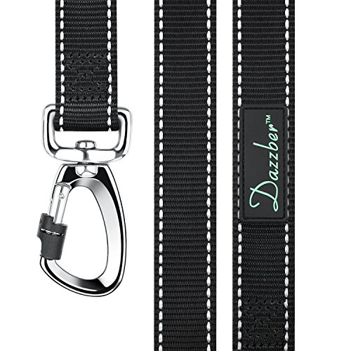 Dazzber Reflective Nylon Dog Leash, 6 FT Long, Classic Black, Strong Durable Dog Training Lead for Large and Medium Dogs