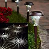 Enchanted Spaces Solar Path Light, Set of 6, Bronze, with Glass Lens, Metal Ground Stake, and Extra-Bright LED for Lawn, Patio, Yard, Walkway, Driveway