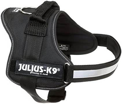 Julius-K9, Talla 0, 58-76 cm, Negro: Amazon.es: Productos para ...