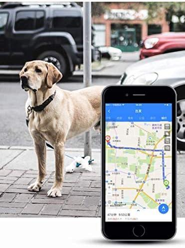 リアルタイムで2020年のミニモデルはトラッカーペットのGPS、IP68防水GPSの活動は、黒猫犬タグネックレスを監視し、大きな,黒