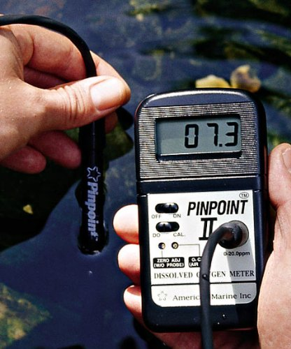 American Marine Pinpoint Oxygen Monitor (Monitor American Marine)
