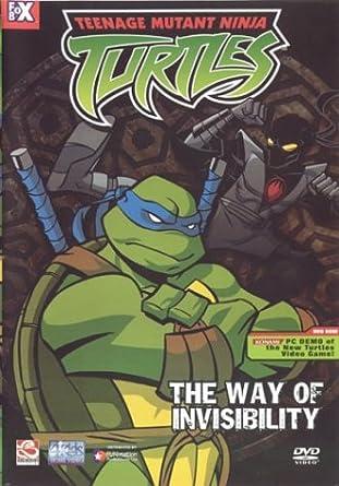 Teenage Mutant Ninja Turtles [USA] [DVD]: Amazon.es: Cine y ...