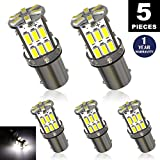 LUYED 5 x Super Bright 3014 30-EX Chipsets BA9 BA9S 53 57 1895 64111 LED Bulbs Used For Side Door Courtesy Lights Map Lights,Xenon White