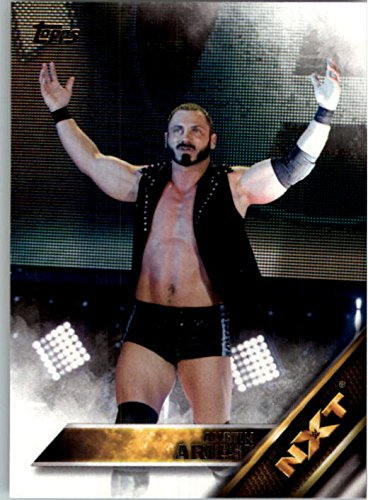 2016 Topps WWE Then Now Forever NXT Prospects #2 Austin - Aries Burbank