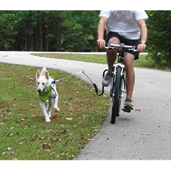 Springer Bike Attachment Hands Free Pet Leashes