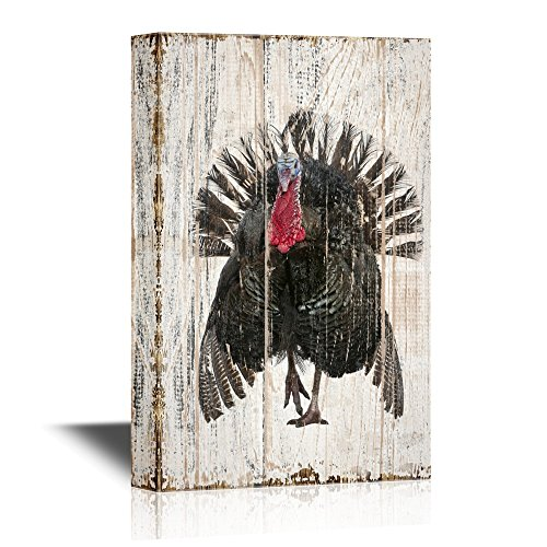 wall26 - Birds and Poultry Canvas Wall Art - A Black Turkey - Vintage Wood Style Giclee Print Gallery Wrap Modern Home Decor | Ready to Hang - 24x36 inches