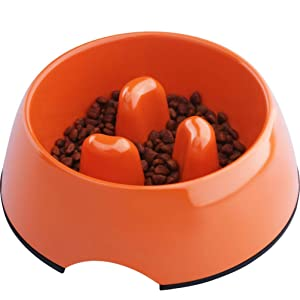 Super Design Anti-Gulping Dog Bowl Slow Feeder
