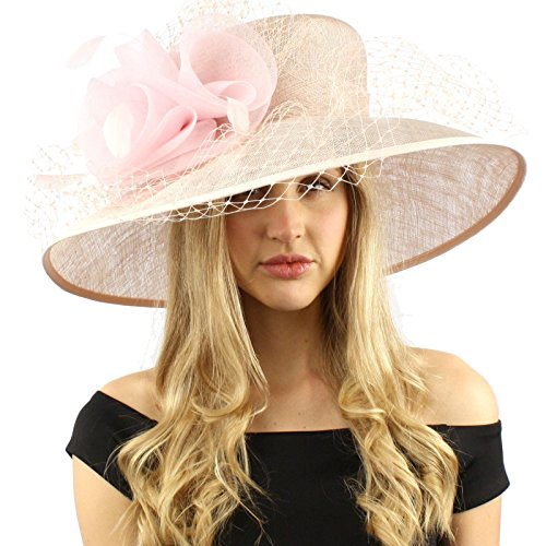 Elegant Dome Simamay Feathers Overlay Netted Derby Floppy 6'' Brim Dress Hat Pink by SK Hat shop