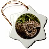 Western Massasauga Rattlesnake, Arizona - US39 JMC0055 - Joe & Mary Ann McDonald Ornament is a perfect addition to your tree or as a window decoration. This glossy porcelain ornament is a great gift for family and friends, commemorating each holi...