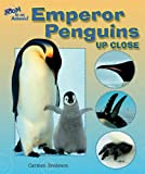Emperor Penguins up Close, Carmen Bredeson, 0766024970