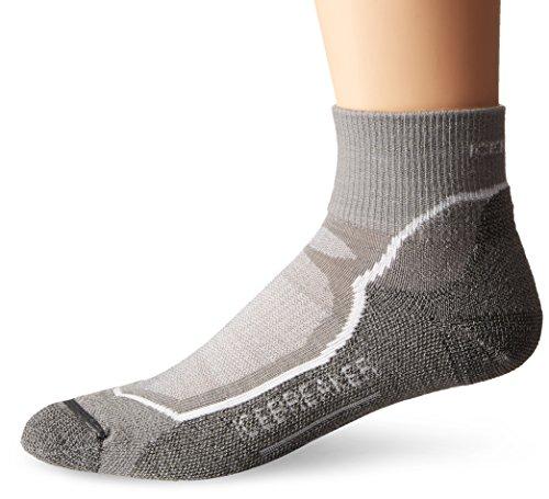 Icebreaker Women's Hike Plus Light Mini Socks, Large, Fossil/White/Monsoon
