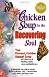 chicken soup for recovery - Chicken Soup for the Recovering Soul: Your Personal, Portable Support Group with Stories of Healing, Hope, Love and Resilience (Chicken Soup for the Soul)