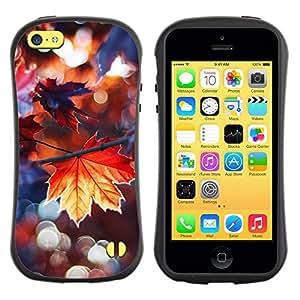 "Pulsar iFace Series Tpu silicona Carcasa Funda Case para Apple iPhone 5C , Lluvia de otoño dom árbol Naturaleza"""
