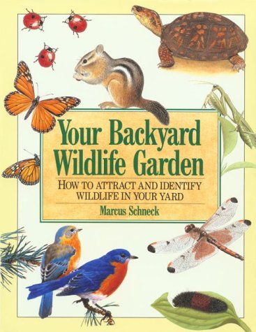 Your Backyard Wildlife Garden: How to Attract and Identify Wildlife in Your Yard