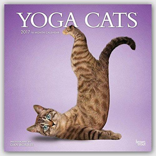 Yoga Cats 2017 Square (Multilingual Edition) (Yoga Calendar Cat)