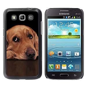 Be Good Phone Accessory // Dura Cáscara cubierta Protectora Caso Carcasa Funda de Protección para Samsung Galaxy Win I8550 I8552 Grand Quattro // Labrador Retriever Golden Guilty Dog