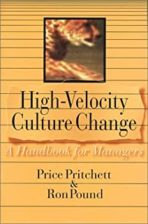 Team reconstruction building a high performance work group during high velocity culture change a handbook for managers fandeluxe Gallery