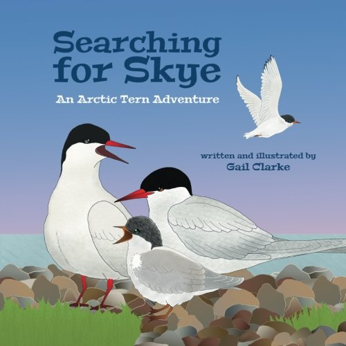 Amazon com: Searching for Skye: An Arctic Tern Adventure