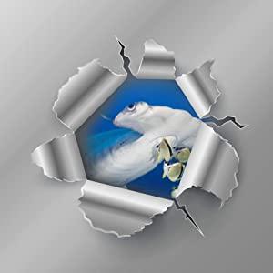 Wall Stickers Scalloped Hammerhead Shark PVC 3D Decals for Kids Baby Living Room Bedroom Playroom Wall Wardrobe Door Decor Stick Wall Decals