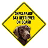 Chesapeake Bay Retriever On Board Home & Car Window Swinger Sign