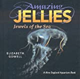 Amazing Jellies: Jewels of the Sea offers