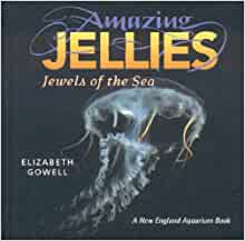 Amazing Jellies Jewels Of The Sea