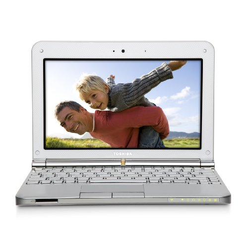 Toshiba Windows Xp Laptops (Toshiba Mini NB205-N311/W 10.1-Inch Frost White Netbook - 9 Hour Battery Life)